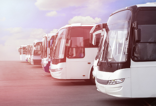 Book over 17,000 bus routes on Easybook